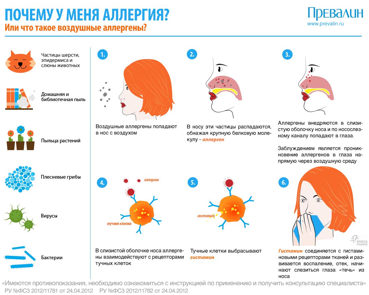 Почему возникает аллергия вокруг глаз