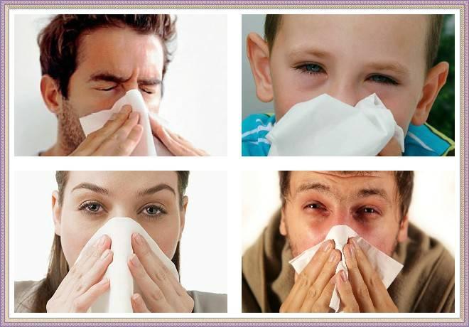 Аллергия на веках глаз лечим быстро
