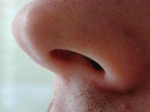 Как быстро вылечить герпес под носом