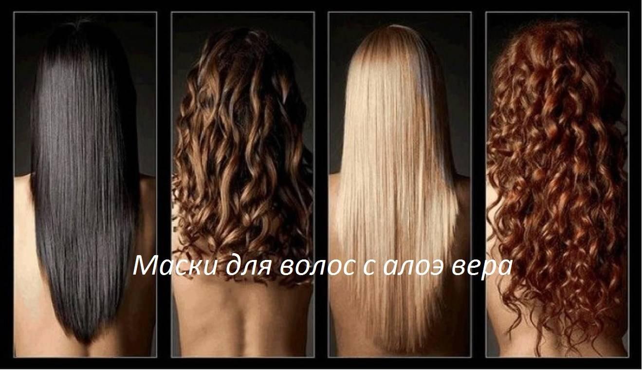 aloe_vera-v-domashney-kosmetologii
