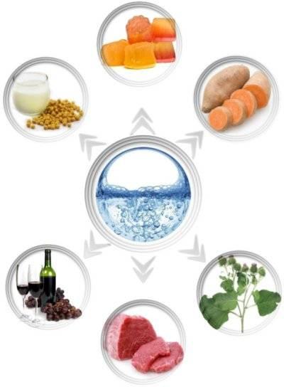 Какие продукты содержат гиалуроновую кислоту